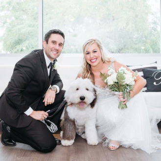Hailey and Harvey wedding dog